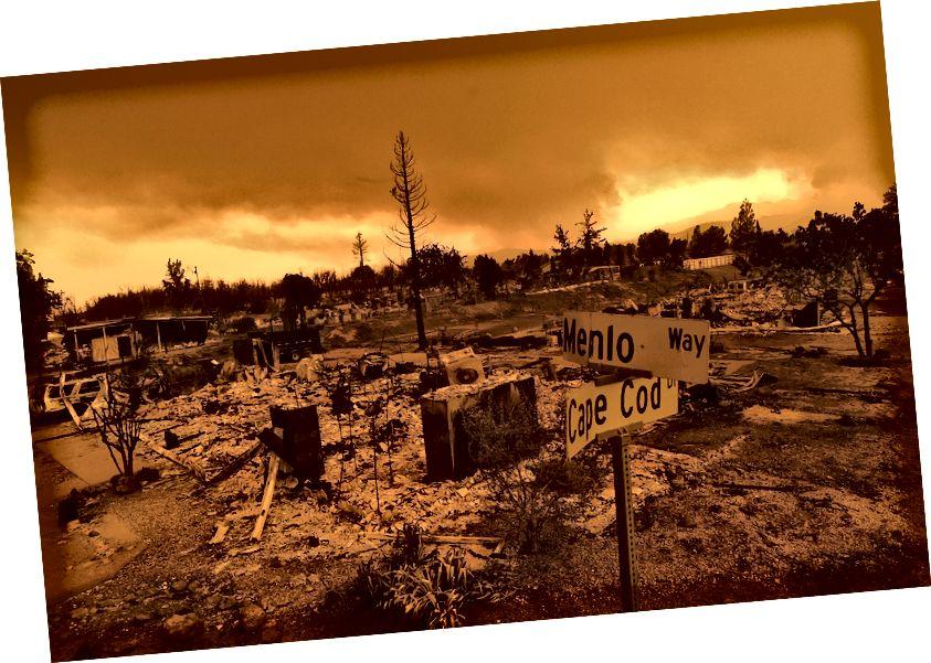 Домове, разрушени от Carr Fire в Рединг, Калифорния (Noah Berger / Associated Press)