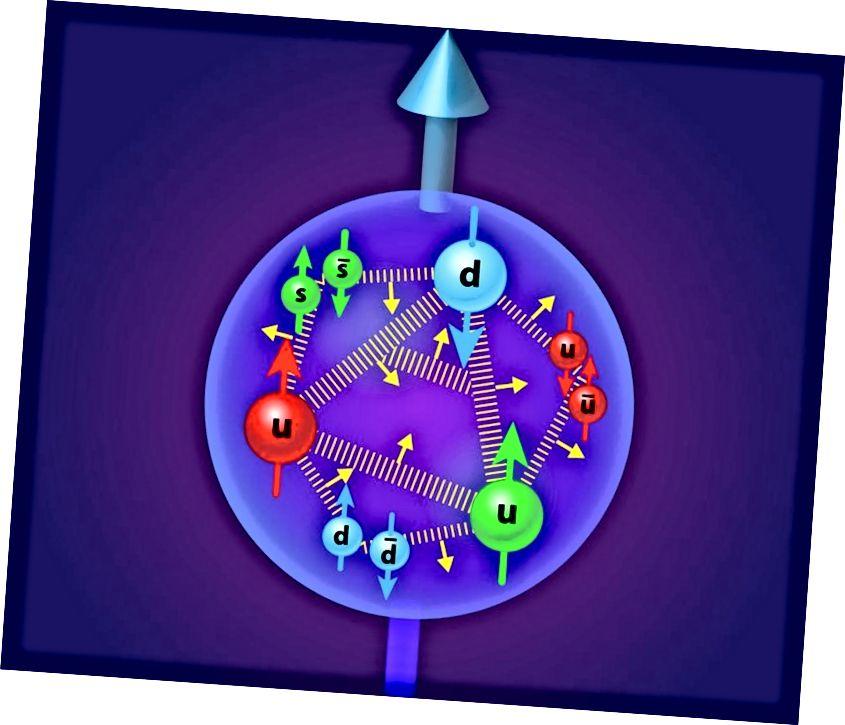 Die drei Valenzquarks eines Protons tragen zu seiner Drehung bei, aber auch die Gluonen, Seequarks und Antiquarks sowie der Drehimpuls der Umlaufbahn. Bildnachweis: APS / Alan Stonebraker.