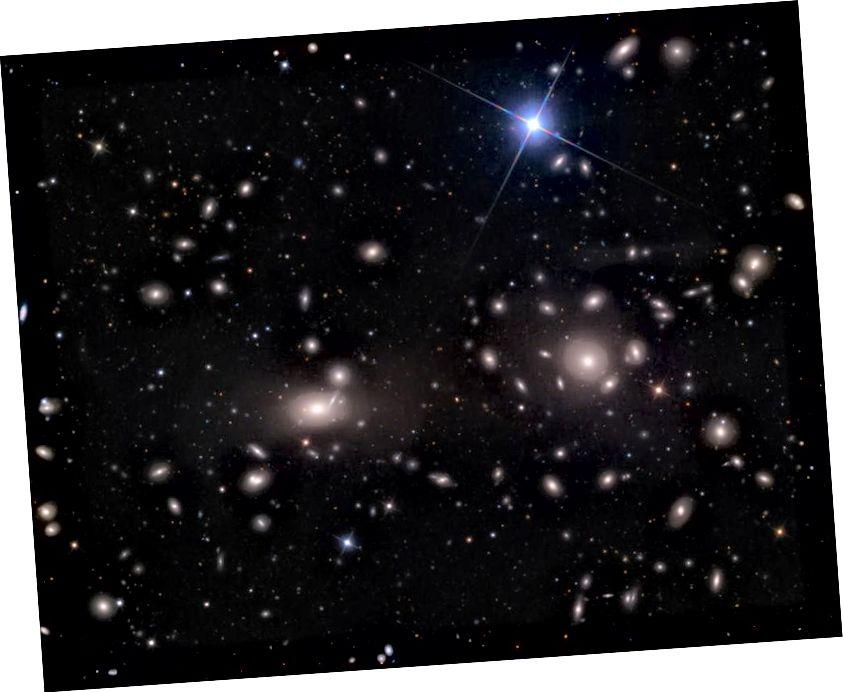 Дві яскраві великі галактики в центрі скупчення Коми, NGC 4889 (зліва) та трохи менший NGC 4874 (праворуч), кожен перевищує розмір мільйона світлових років. Але галактики на околицях, які так швидко стягуються навколо, вказують на існування великого ореолу темної речовини у всьому кластері. Кредит зображення: Адам Блок / Mount Lemmon SkyCenter / Університет Арізони.