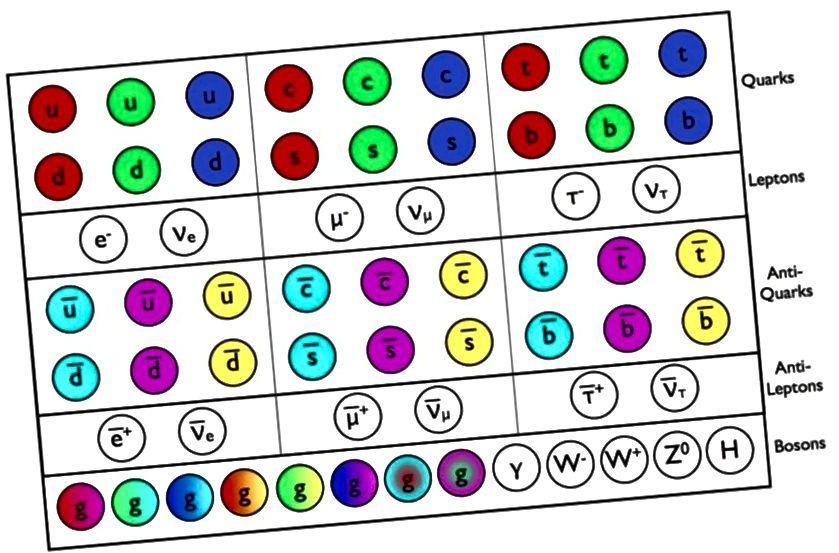 Die Fermionen (Quarks und Gluonen), Antifermionen (Antiquarks und Antileptonen), alle Spin = 1/2 und die Bosonen (Integer Spin) des Standardmodells, alle zusammen gezeigt. Bildnachweis: E. Siegel.