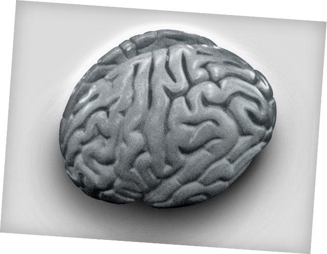 Kvrga materije koja kontrolira cijelu vašu percepciju postojanja