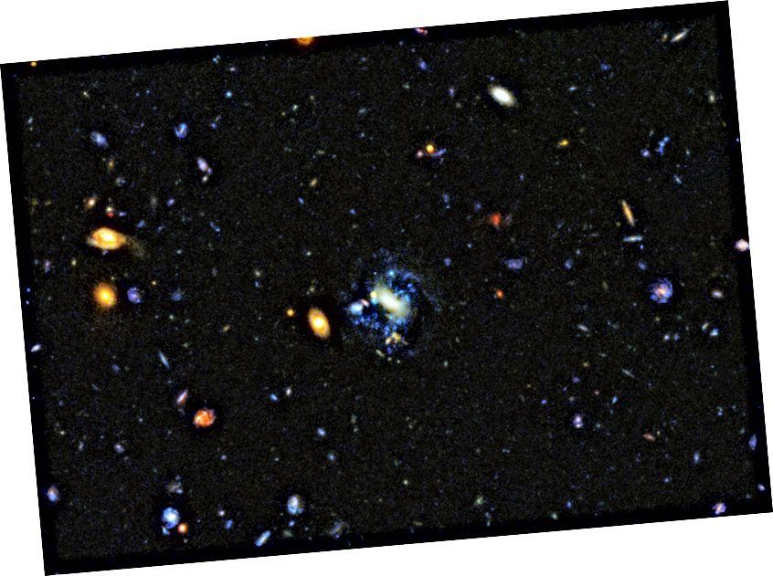 Galaxien, die derzeit Gravitationswechselwirkungen oder Fusionen unterliegen, bilden fast immer auch neue, helle, blaue Sterne. Ein einfacher Zusammenbruch ist zunächst der Weg zur Bildung von Sternen, aber der größte Teil der Sternentstehung, die wir heute sehen, resultiert aus einem gewalttätigeren Prozess. Die unregelmäßigen oder gestörten Formen solcher Galaxien sind eine Schlüsselsignatur dafür, dass dies der Fall ist. (NASA, ESA, P. OESCH (UNIVERSITÄT GENF) UND M. MONTES (UNIVERSITÄT NEUE SÜDWALE))