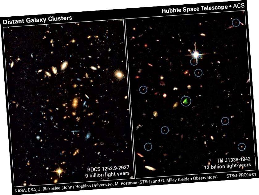 Hubbles fortschrittliche Kamera für Vermessungen identifizierte eine Reihe von weit entfernten Galaxienhaufen. Wenn die Dunkle Energie eine kosmologische Konstante ist, bleiben alle diese Cluster wie alle Galaxiengruppen und -cluster gravitativ gebunden, beschleunigen sich jedoch im Laufe der Zeit von uns und voneinander weg, da die Dunkle Energie weiterhin die Expansion des Universums dominiert. Diese weit entfernten Cluster weisen Sternentstehungsraten auf, die weitaus höher sind als die Cluster, die wir heute beobachten. (NASA, ESA, J. BLAKESLEE, M. POSTMAN UND G. MILEY / STSCI)