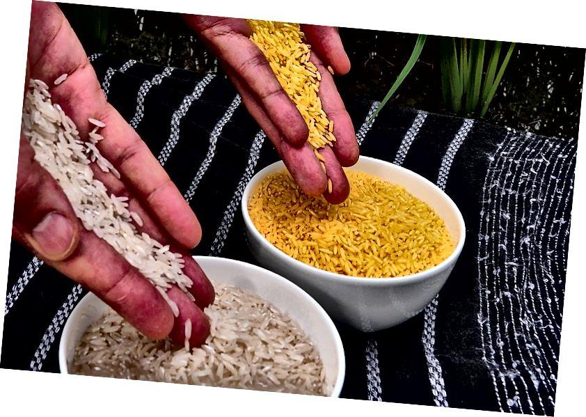 https://commons.wikimedia.org/wiki/File:Golden_Rice.jpg