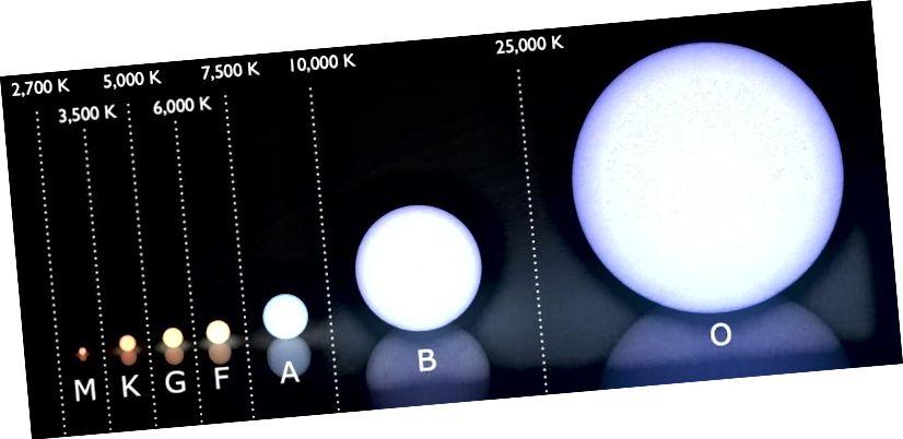 Das (moderne) Morgan-Keenan-Spektralklassifizierungssystem mit dem darüber gezeigten Temperaturbereich jeder Sternklasse in Kelvin. Die überwiegende Mehrheit (75%) der heutigen Sterne sind Sterne der M-Klasse, wobei nur 1: 800 massiv genug für eine Supernova ist. So heiß O-Sterne auch werden, sie sind nicht die heißesten Sterne im gesamten Universum. Es gibt einige besondere, die zu den seltensten Stars von allen gehören. (Wikimedia Commons-Benutzer LucasVB, Ergänzungen von E. Siegel)