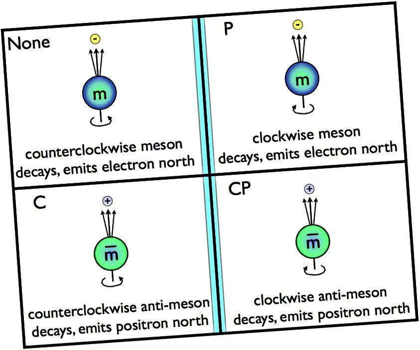 Ein normales Meson dreht sich gegen den Uhrzeigersinn um seinen Nordpol und zerfällt dann, wobei ein Elektron entlang der Richtung des Nordpols emittiert wird. Durch Anwenden der C-Symmetrie werden die Partikel durch Antiteilchen ersetzt, was bedeutet, dass sich ein Antimeson gegen den Uhrzeigersinn um seinen Nordpolzerfall dreht, indem ein Positron in Nordrichtung emittiert wird. In ähnlicher Weise dreht die P-Symmetrie um, was wir in einem Spiegel sehen. Wenn sich Partikel und Antiteilchen unter C-, P- oder CP-Symmetrien nicht genau gleich verhalten, wird diese Symmetrie als verletzt bezeichnet. Bisher verletzt nur die schwache Interaktion eine der drei. (E. SIEGEL / ÜBER DIE GALAXIE HINAUS)