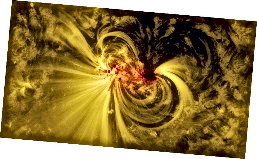 Một vết đen mặt trời, được quan sát bởi Đài thiên văn Động lực học Mặt trời (SDO) cho thấy từ trường cực mạnh của nó. Tín dụng hình ảnh: Trung tâm bay không gian Goddard của NASA / SDO