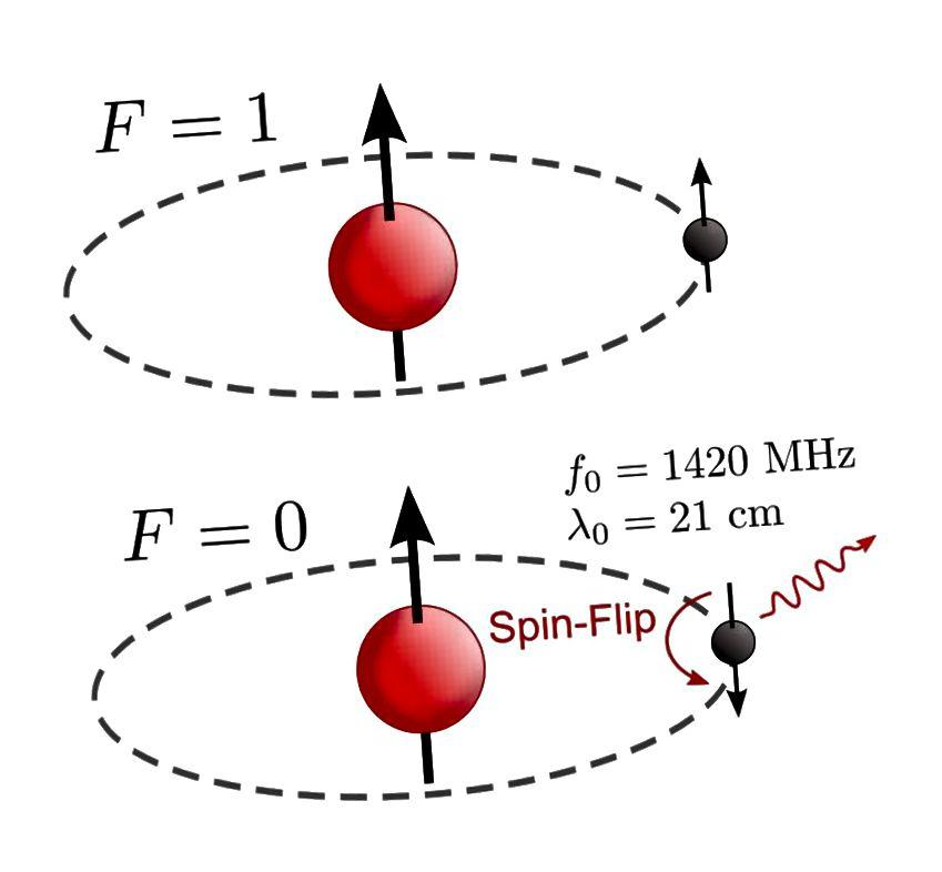 Die 21-Zentimeter-Wasserstofflinie entsteht, wenn ein Wasserstoffatom, das eine Protonen / Elektronen-Kombination mit ausgerichteten Spins (oben) enthält, zu anti-ausgerichteten Spins (unten) wechselt und ein bestimmtes Photon mit einer sehr charakteristischen Wellenlänge emittiert. (Tiltec von Wikimedia Commons)