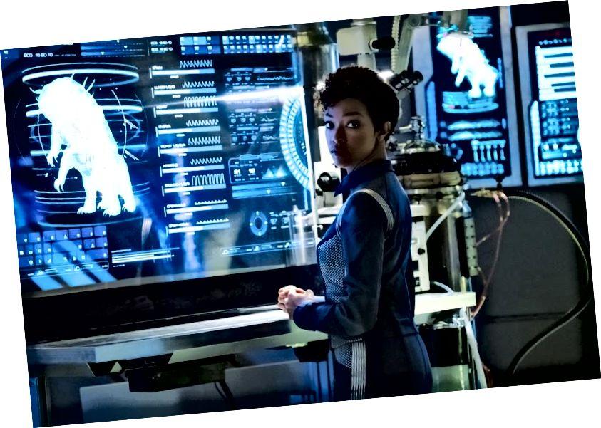 Gdy załoga Star Trek: Discovery po raz pierwszy dowiedziała się o Tardigradzie i zarodnikach grzybni, nie mieli pojęcia, że faktycznie może ona mieć klucz do podróżowania szybciej, niż pozwala na to nawet napęd warp. (JAN THIJS / CBS © 2017 CBS INTERACTIVE)