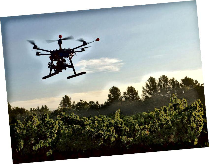 Puude istutamise droonid võivad meie saatuse tuleviku enda käes hoida (Allikas: smithsonianmag)
