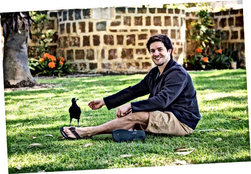 Доктор Бенджамин Астон және оның зерттеу тақырыбының бірі, жабайы батыс австралиялық магни (Gymnorhina tibicen dorsalis). (Несие: Батыс Австралия университеті.)