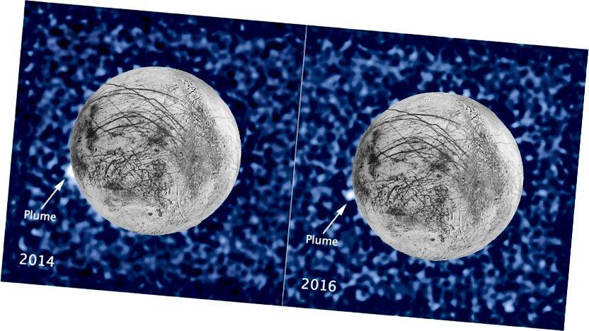 Гэтыя кампазіцыйныя выявы паказваюць падазраваны шум матэрыялу, які вывяргаецца за два гады ад таго ж месца на ледзяной месяцы Еўропы Юпітэра. Абодва шлейфа, сфатаграфаваныя ў ультрафіялетавым святле касмічным тэлескопам HABble Spectrograph, былі заўважаныя ў сілуэце, калі месяц праходзіў перад Юпітэрам. Малюнак: NASA / ESA / W. Іскры (STScI) / Навуковы цэнтр астрагеалогіі USGS