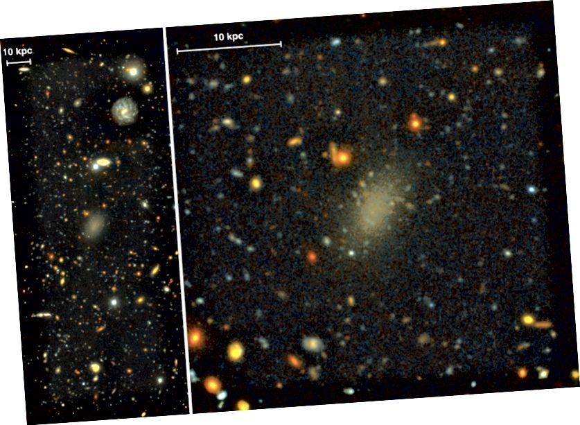 Abbildung 1, van Dokkum et al. 2016. Dragonfly 44, eine mögliche dunkle Galaxie, ist selbst in diesen Bildern, in denen G- und I-Band-Daten kombiniert werden, sehr schwach.