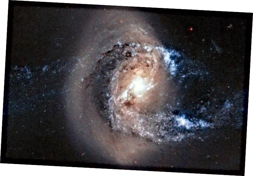 Združitve galaksije so običajne in s časom se bodo vse gravitacijsko vezane galaksije v skupinah in grozdih sčasoma združile v eno samo galaksijo v jedru vsake vezane strukture. Ko pride do večjih združitev, je rezultat pogosto velikanska eliptična, toda nihče ni prepričan, kaj se zgodi, kolikor segajo pritlikave satelitske galaksije. Kreditna slika: A. Gai-Yam / Weizmann Inst. znanosti / ESA / NASA.