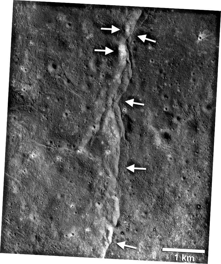 Тази видна грешка в тягата е една от хилядите, открити на Луната от Лунния разузнавателен орбитър на НАСА (LRO). Тези разломи наподобяват малки стълбовидни скали или шалчета, когато се виждат от лунната повърхност. Шалчетата се образуват, когато един участък от лунната кора (стрелки, насочени вляво) е избутан нагоре над съседна секция (стрелки, насочени вдясно), когато вътрешността на луната се охлажда и свива. Нови изследвания показват, че тези неизправности могат да бъдат активни и днес (LROC NAC кадър M190844037LR; NASA / GSFC / Аризонски държавен университет / Smithsonian)