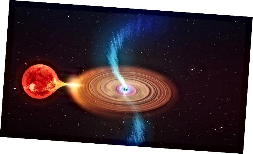 Уражанне мастака ад V404 Cygni відаць зблізку. Бінарная зорная сістэма складаецца з звычайнай зоркі на арбіце з чорнай дзіркай. Матэрыял з зоркі падае ў бок чорнай дзіркі і спіралі ўнутр у дыме, які ўтвараецца з унутраных абласцей, блізкіх да чорнай дзіркі (ICRAR)