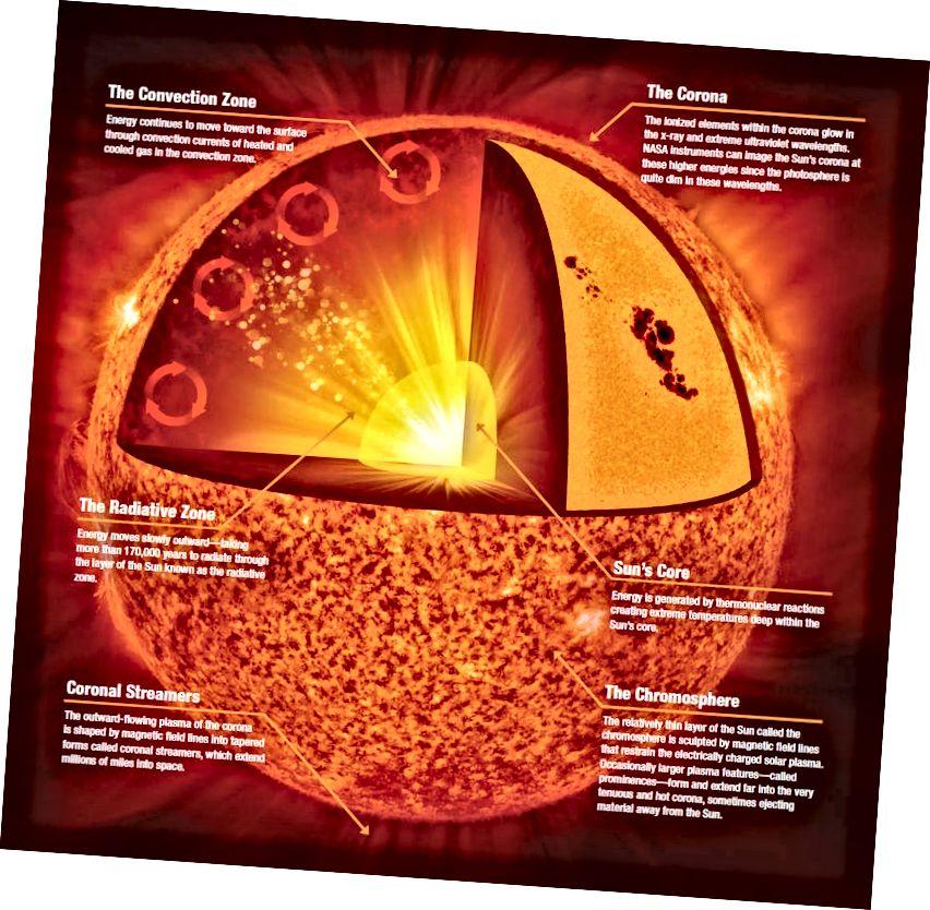 Արեգակի անատոմիան, ներառյալ ներքին միջուկը, որը միակ տեղն է, որտեղ տեղի է ունենում միաձուլում: Պատկերային վարկ. NASA / Jenny Mottar.