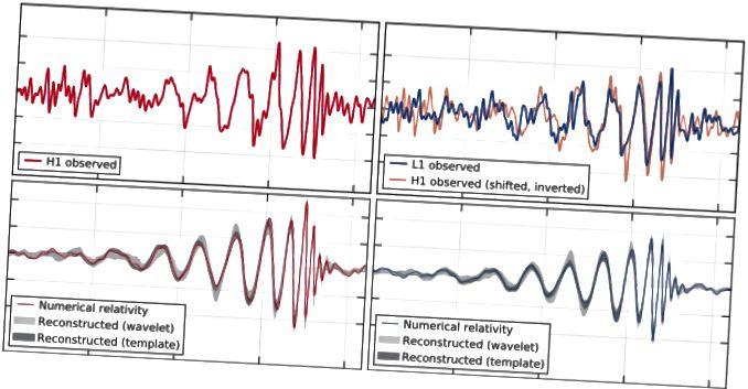 Das erste Gravitationswellenereignis, das jemals direkt erfasst wurde. Bildnachweis: Beobachtung von Gravitationswellen aus einer binären Schwarzlochfusion BP Abbott et al., (LIGO Scientific Collaboration and Virgo Collaboration), Physical Review Letters 116, 061102 (2016).