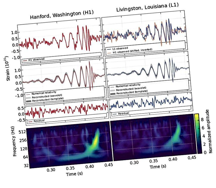 An comhartha tonn imtharraingthe ón gcéad péire de phoill dhubh braite, chumaisc ón gcomhoibriú LIGO. Tá na sonraí amha agus na teimpléid theoiriciúla dochreidte maidir le cé chomh maith agus a mheaitseálann siad. Creidmheas íomhá: BP Abbott et al. (Comhoibriú Eolaíoch LIGO agus Comhoibriú Mhaighdean).