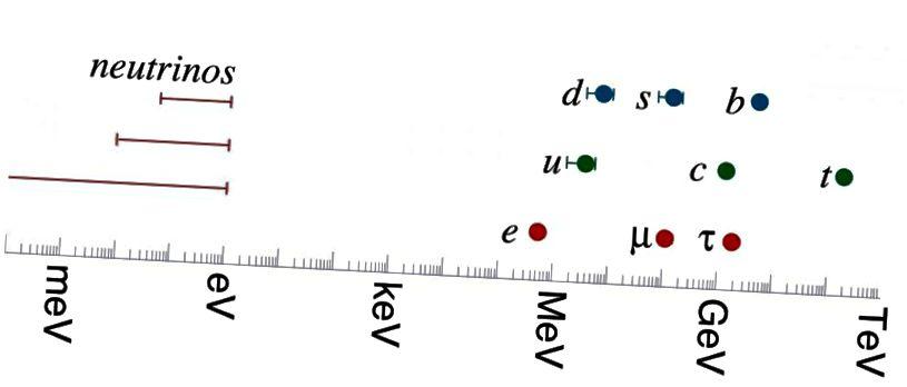 Масы кваркаў і лептонаў стандартнай мадэлі. Самая цяжкая стандартная часціца мадэлі - верхні кварк; самы лёгкі ненейтрына - гэта электрон. Самі нейтрына па меншай меры ў 4 мільёны разоў лягчэй, чым электрон: большая розніца, чым існуе паміж усімі іншымі часціцамі (Hitoshi Murayama, http://hitoshi.berkeley.edu/)