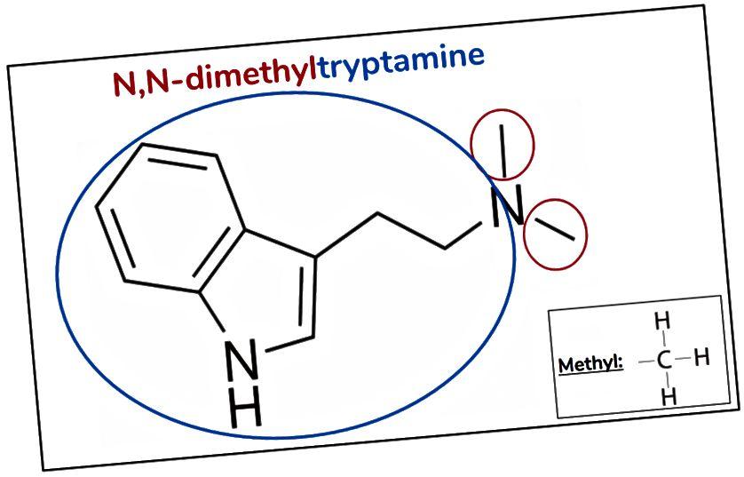Figur 5. DMT