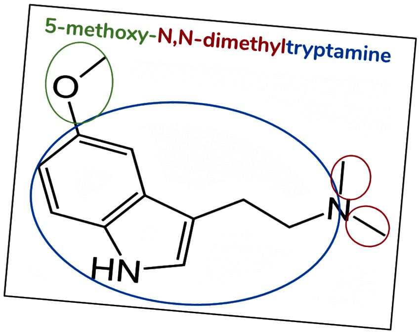 Figur 6. 5-MeO-DMT