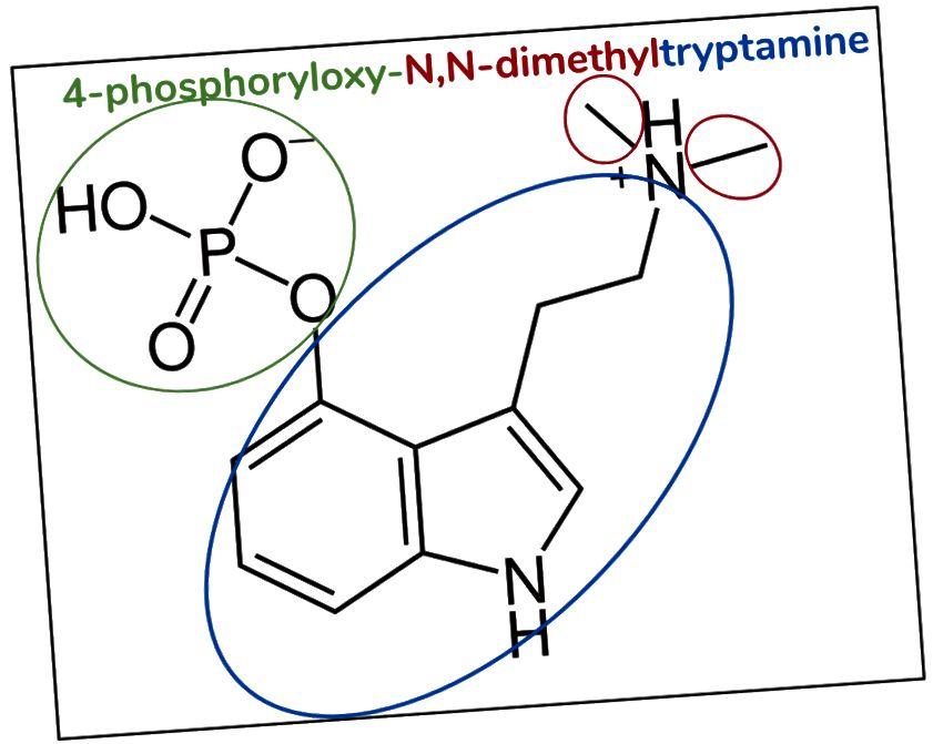 Figur 9. Psilocybin