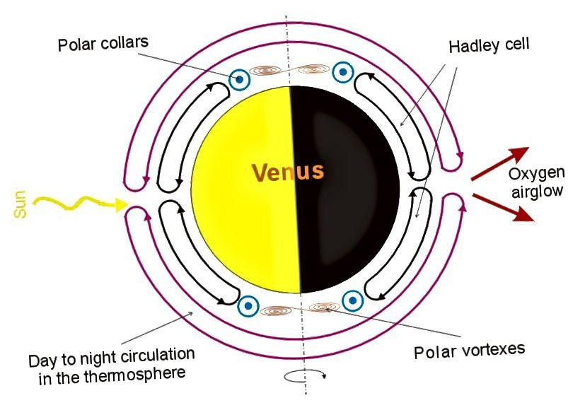 """Изрязване на атмосферата на Венера, подчертаваща атмосферната циркулация на планетата. Екваторът има значително по-малко атмосферна активност в сравнение с останалата част от планетата, подобен на атмосферните """"одухотворения"""" на Земята."""