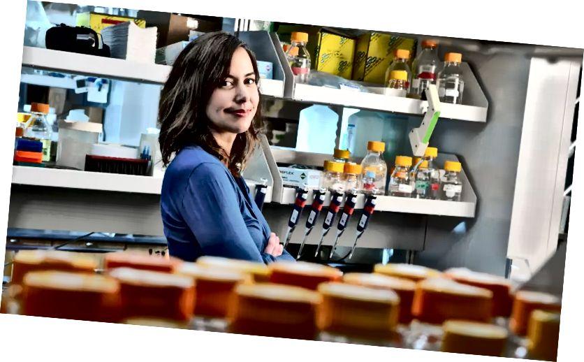 Profesorica Christina Smolke [Foto: Rod Searcey]