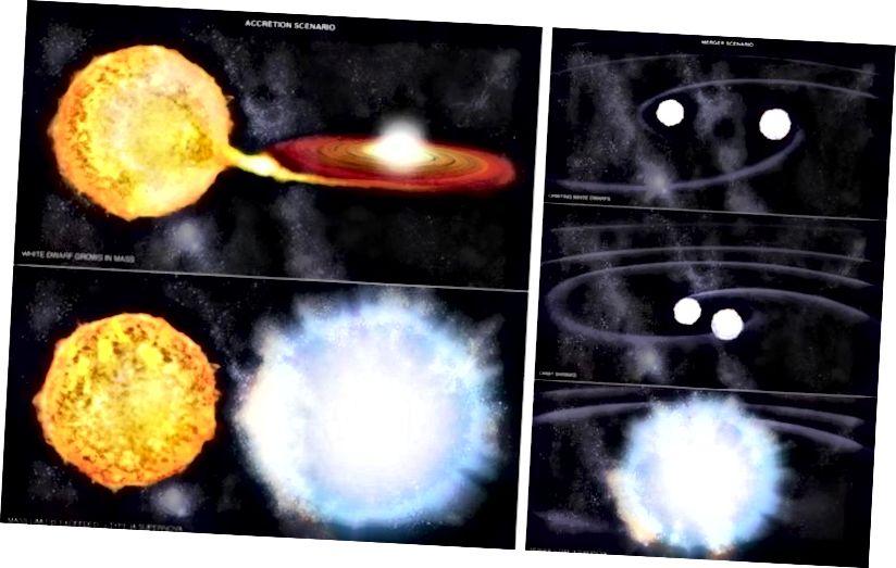 Zwei verschiedene Möglichkeiten, eine Supernova vom Typ Ia zu erstellen: das Akkretionsszenario (L) und das Fusionsszenario (R). Es ist noch nicht bekannt, welcher dieser beiden Mechanismen bei der Erzeugung von Supernova-Ereignissen vom Typ Ia häufiger auftritt oder ob diese Explosionen eine unentdeckte Komponente aufweisen. (NASA / CXC / M. WEISS)
