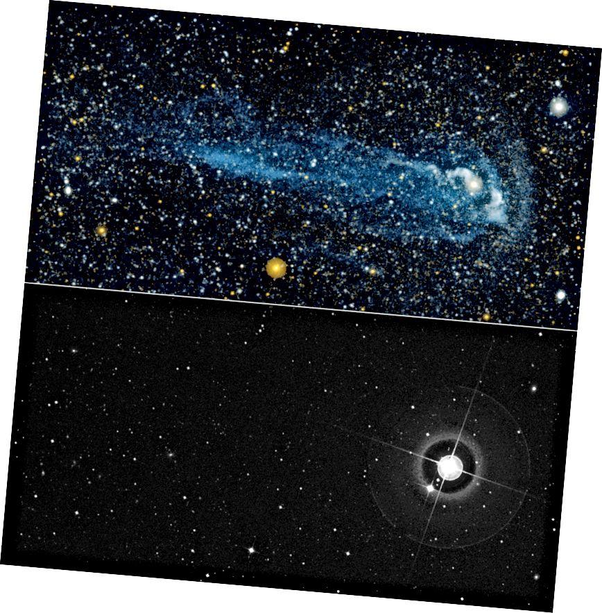 An réalta Mira atá ag gluaiseacht go tapa, lena eireaball (thuas), i solas ultraivialait (barr) agus infheicthe (bun). Creidmheas íomhá: NASA / JPL-Caltech / POSS-II / DSS / C. Máirtín (Caltech) / M. Seibert (OCIW).