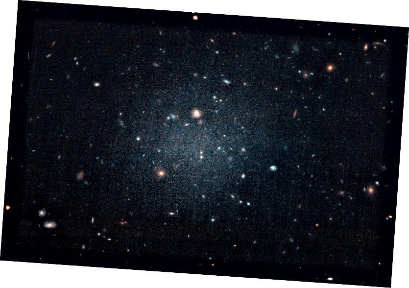 Ova velika, neizrazita galaksija toliko je difuzna da ju astronomi nazivaju galaksijom koja prolazi jer mogu jasno vidjeti udaljene galaksije iza nje. Sjajni objekt, katalogiziran kao NGC 1052-DF2, nema upadljivu središnju regiju, ili čak spiralne krakove i disk, tipične karakteristike spiralne galaksije. Ali ni to ne izgleda kao eliptična galaksija, jer je njegova brzinska disperzija sve pogrešna. Čak su i njegove kuglične nakupine čudne kugle: dvostruko su veće od tipičnih zvjezdanih skupina koje se vide u drugim galaksijama. Sve ove neobičnosti blijede su u usporedbi s najčudnijim aspektom ove galaksije: NGC 1052-DF2 vrlo je kontroverzan zbog prividnog nedostatka tamne materije. Ovo bi moglo riješiti ogromnu kozmičku zagonetku. (NASA, ESA i P. VAN DOKKUM (YALE UNIVERSITY))