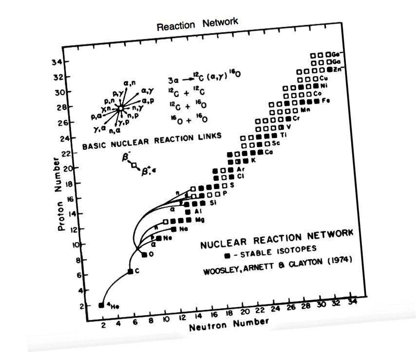 Zvaigžņu nukleosintēzes elementu - stabilu un nestabilu - veidošanas veidi. Attēla kredīts: Vooslijs, Ārnets un Klintsons (1974), Astrophysical Journal.