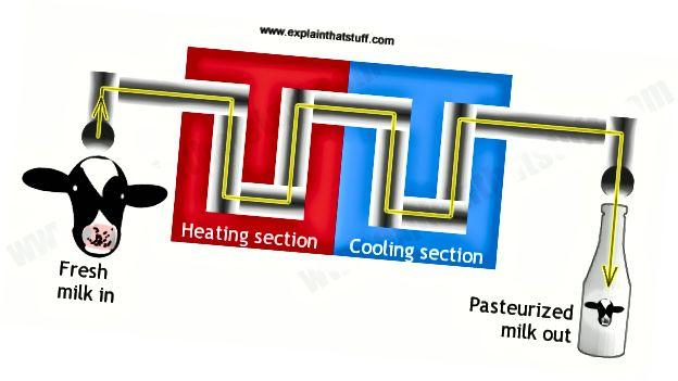 Pasteurization; tarrtháil