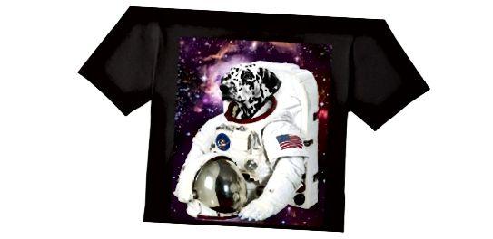 Ovaj zabavni pas Astronaut Tee nije na popisu, ali ga ipak možete dobiti ovdje.