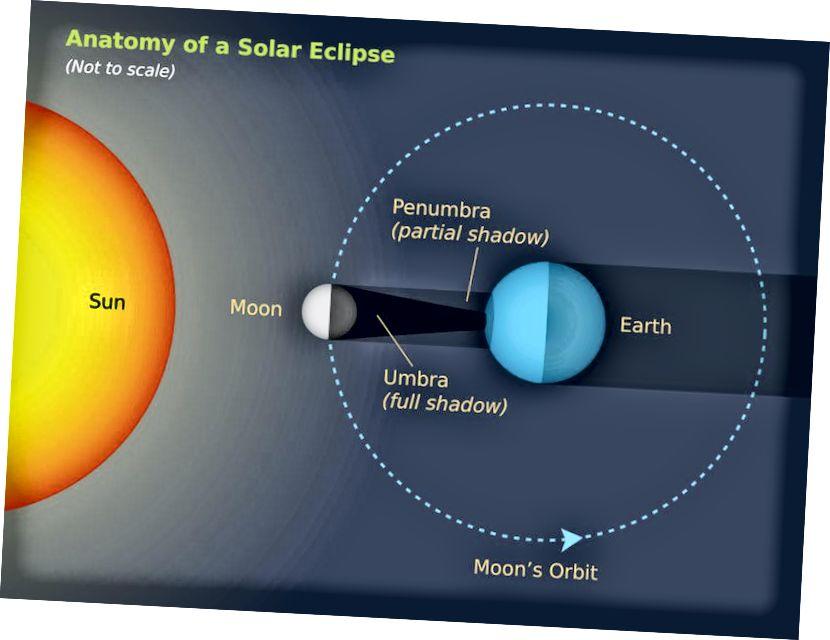 Eine Illustration der Sonne-Mond-Erde-Konfiguration, die eine totale Sonnenfinsternis auslöst. Die Ungleichmäßigkeit der Erde bedeutet, dass sich der Schatten des Mondes verlängert, wenn er sich nahe am Erdrand befindet. Bildnachweis: Starry Night Bildungssoftware.