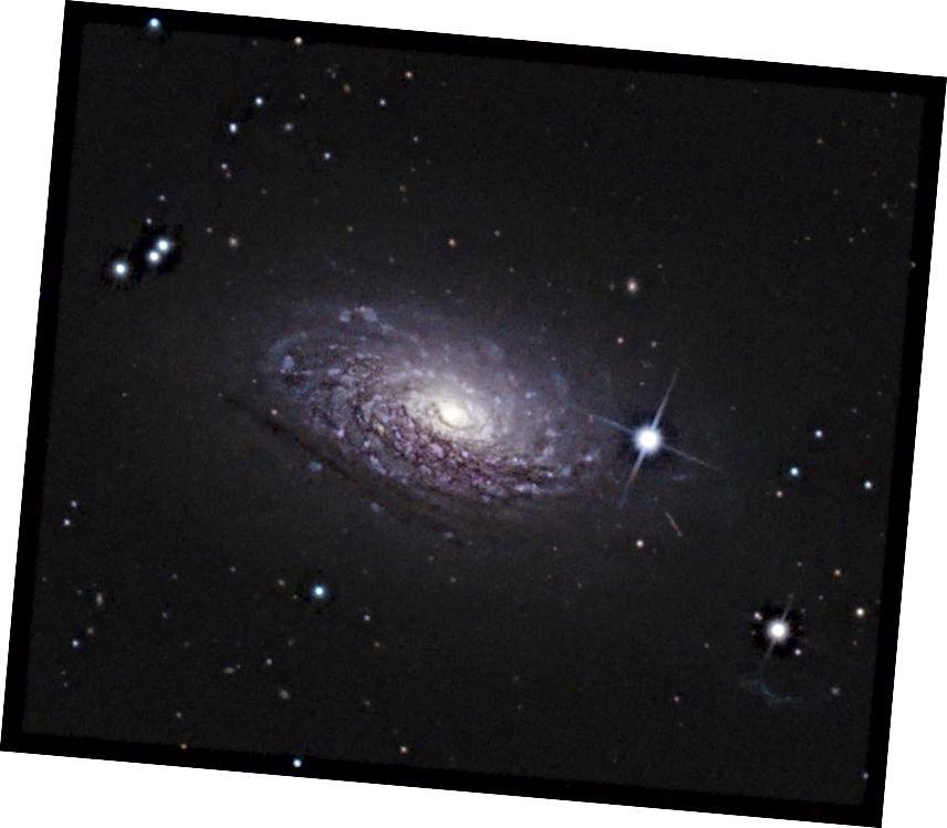Прырода спіральных туманнасцей, як галактыка Сланечнік, М63, была невядомая толькі стагоддзе таму. (Крэдыт малюнка: карыстальнік Wikimedia Commons Ptitlepan, пад ліцэнзіяй cca-sa-4.0)