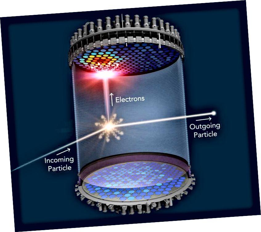 Die Suche nach dunkler Teilchenmaterie hat uns veranlasst, nach WIMPs zu suchen, die sich mit Atomkernen zurückziehen können. Die LZ-Kollaboration wird die besten Grenzen für WIMP-Nukleonenquerschnitte von allen bieten, aber die am besten motivierten Szenarien für ein schwachkraftgetriebenes Teilchen auf oder nahe der elektroschwachen Skala, die 100% der dunklen Materie ausmachen, sind bereits ausgeschlossen . (LUX-ZEPLIN (LZ) ZUSAMMENARBEIT / SLAC NATIONAL ACCELERATOR LABORATORY)