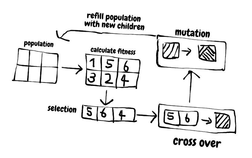 Arbeitsprozess des genetischen Algorithmus