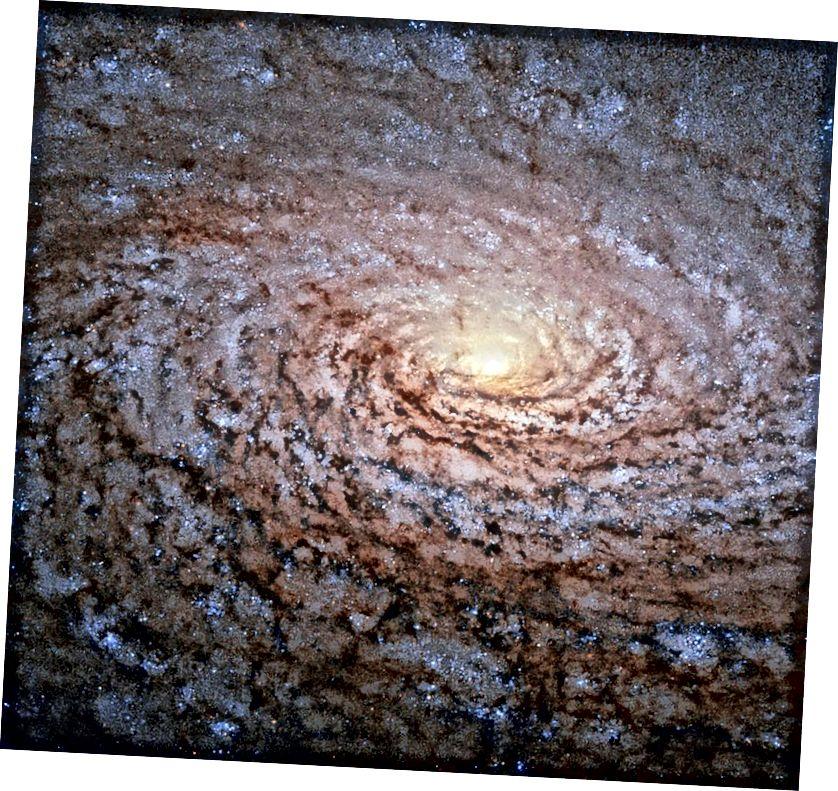Galaksi Sunflower, Messier 63, miring relatif terhadap garis pandang kami, dengan satu setengahnya tampak lebih berdebu daripada yang lainnya. Ini adalah galaksi spiral berevolusi yang belum memiliki merger besar baru-baru ini, dan hanya sedikit lebih spiral-y (atau flokulan) daripada galaksi kita. (ESA / HUBBLE & NASA)