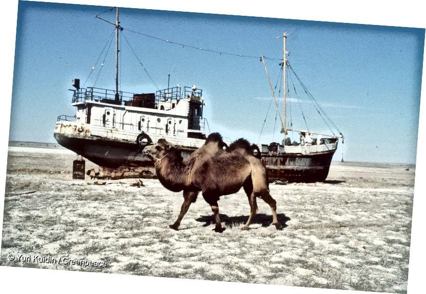 Danau Aral - 1993