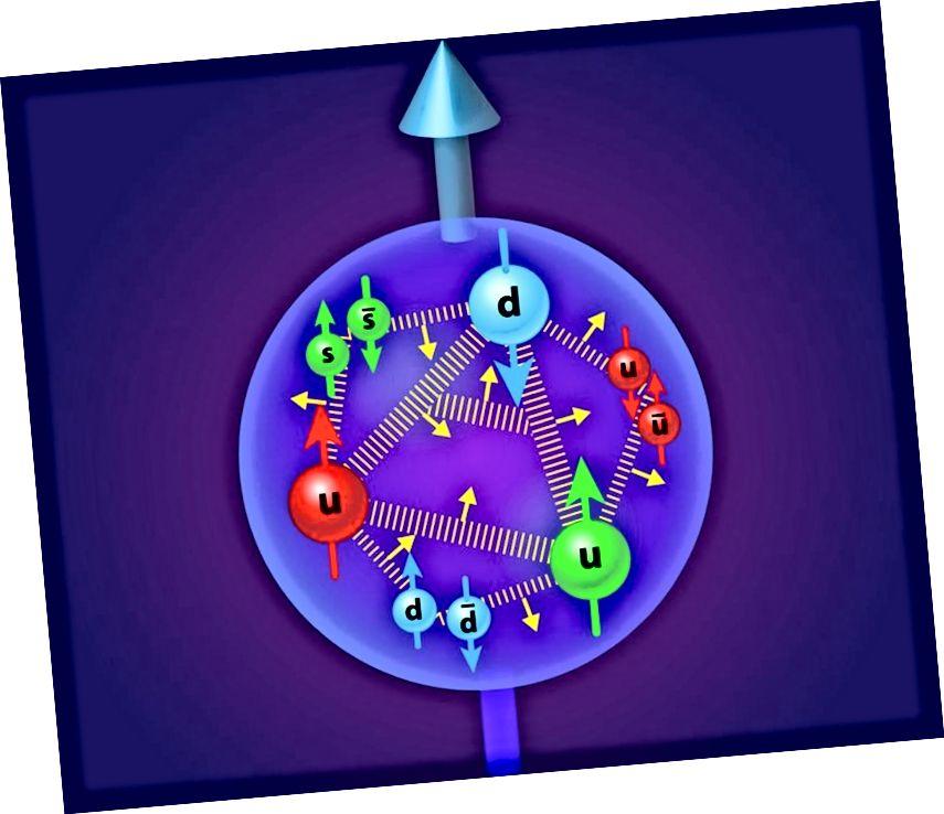 Тры кванты валентнасці пратона спрыяюць яго кручэнню, але гэтак жа дзейнічаюць глюоны, марскія кваркі і антыкваркі, а таксама імпульс арбітальнага вугла. Электрастатычнае адштурхоўванне і прывабная моцная ядзерная сіла ў тандэме - гэта тое, што надае пратону свае памеры. Малюнак: APS / Alan Stonebraker.