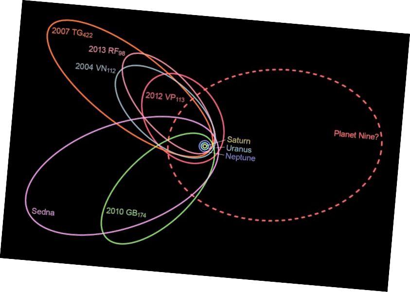 Незвычайна цесна размешчаныя арбіты шасці самых аддаленых аб'ектаў у поясе Койпера, як было першапачаткова выяўлена ў 2016 годзе, могуць сведчыць аб існаванні дзявятай планеты, гравітацыя якой уплывае на гэтыя руху. Крэдыт малюнка: карыстальнік Wikimedia nagualdesign праз Caltech.