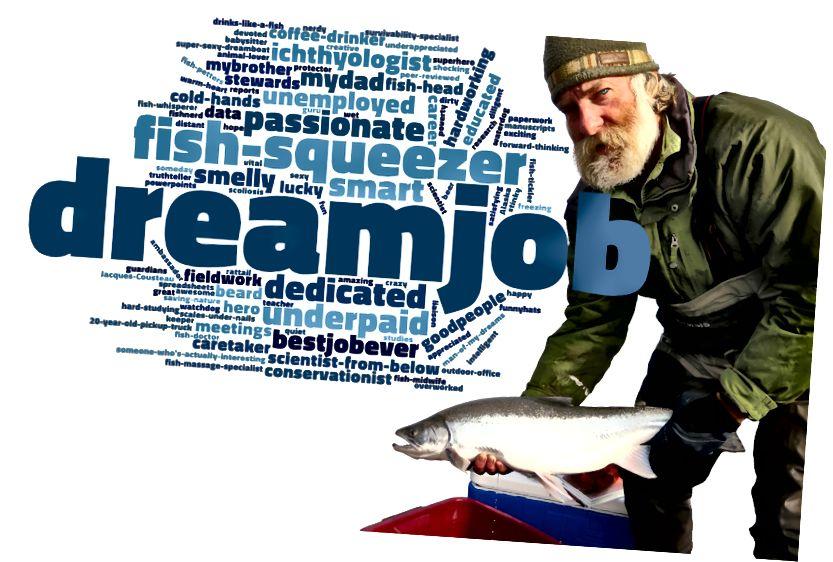 Мы спыталі ў нашай супольнасці #fishnerd facebook, што яны думаюць пра нас. Укладальнік USFWS / Катрына Лібіч