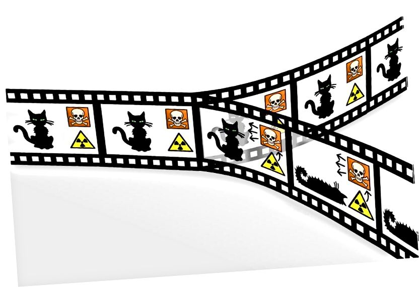 Die Idee der Paralleluniversen, wie sie auf Schrödingers Katze angewendet wird. So lustig und überzeugend diese Idee auch ist, ohne eine unendlich große Region, in der diese Möglichkeiten bestehen, wird selbst die Inflation nicht genug Universen schaffen, um alle Möglichkeiten zu enthalten, die uns 13,8 Milliarden Jahre kosmischer Evolution gebracht haben. Bildnachweis: Christian Schirm.