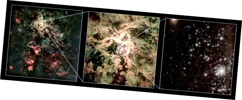 Klyngen RMC 136 (R136) i Tarantula-tågen i den store magellanske sky er hjemsted for de mest massive stjerner, der er kendt. R136a1, den største af dem alle, er over 250 gange solens masse. Billedkredit: European Southern Observatory / P. Crowther / CJ Evans.