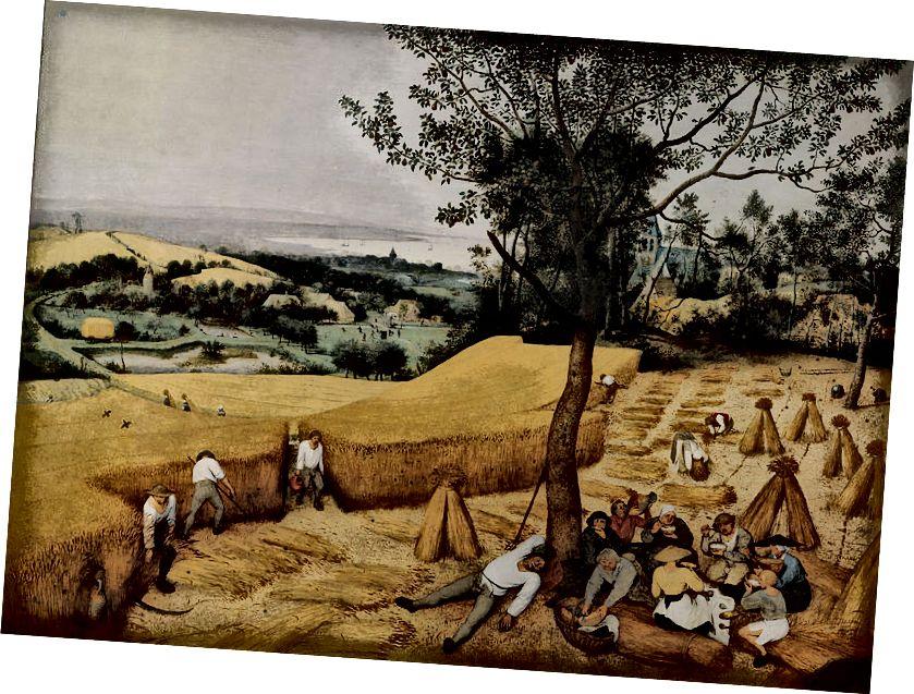 https://en.wikipedia.org/wiki/History_of_agriculture#/media/File:Pieter_Bruegel_the_Elder-_The_Harvesters_-_Google_Art_Project.jpg