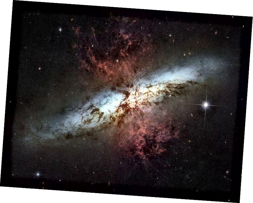 Galaxien, die massiven Sternentstehungsschüben ausgesetzt sind, können sogar viel größere, typische Galaxien überstrahlen. M82, die Zigarrengalaxie, interagiert gravitativ mit seinem Nachbarn (nicht abgebildet) und verursacht diesen Ausbruch einer aktiven, neuen Sternentstehung, die Gas aus seiner zentralen Region ausstößt. Die Auswirkungen der Sternwinde sind deutlich in Rot sichtbar (NASA, ESA UND DAS HUBBLE HERITAGE TEAM (STSCI / AURA)).