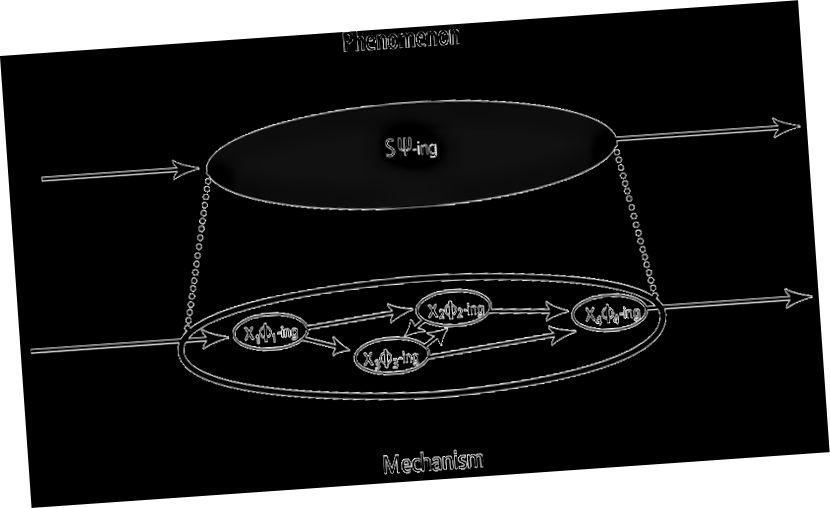 Diagramme schématique d'un mécanisme: les entités organisées et leurs activités (en bas) sont responsables d'un phénomène d'intérêt (en haut).