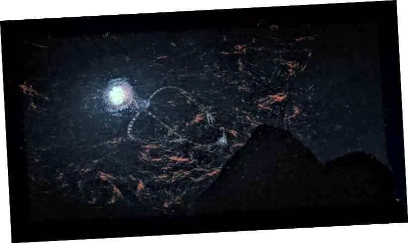 Պատկերված Europa Octo խորթ օտարի նկարազարդում, որը լողում է ժայռից: Եվրոպան, որը գտնվում է Յուպիտեր մոլորակի շուրջ պտտվող լուսնի վրա, հաճախ համարվում է որպես Երկրի այն կողմ գտնվող մեր Արևային համակարգի ամենահավանական թեկնածուն աշխարհում: Եվ դա կարող է վտանգավոր լինել մեր սեփական համար: Պատկերի վարկ. Lwp Kommunikáció / flickr.